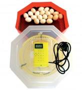 Incubator electric, Capacitate: 60 oua gaina, Termometru digital