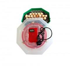 Incubator electric cu dispozitiv de intoarcere, Capacitate: 41 oua gaina, Termometru digital